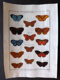 Diderot C1790 Antique Hand Col Print. Butterflies 32